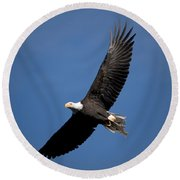Bald Eagle I Round Beach Towel
