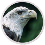 Bald Eagle On Guard Round Beach Towel
