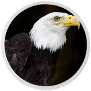 Bald Eagle - Pnw Round Beach Towel