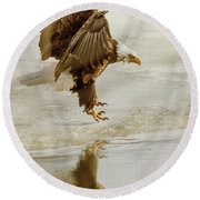 Bald Eagle Series #1 - Eagle Is Landing Round Beach Towel