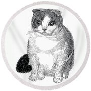 Ball Of Furry Fun Round Beach Towel