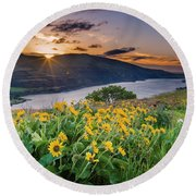Balsamroot At Sunrise Round Beach Towel