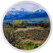 Balsamroot Flowers And North Cascade Mountains Round Beach Towel