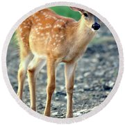 Bambi2 Round Beach Towel