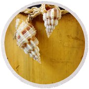 Bamboo And Conches Round Beach Towel by Carlos Caetano