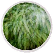 Bamboo In The Wind Round Beach Towel