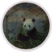 Bamboo Thats For Dinner Round Beach Towel