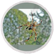 Banana Spider Round Beach Towel