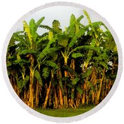 Banana Trees Round Beach Towel