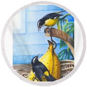 Bananaquits And Bananas Round Beach Towel