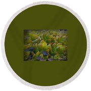 Bank Of Succulents Round Beach Towel