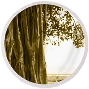 Banyan Surfer - Triptych  Part 2 Of 3 Round Beach Towel