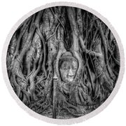 Banyan Tree Round Beach Towel by Adrian Evans