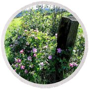 Barbed Wire And Roses Round Beach Towel