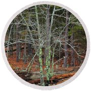 Bare Tree And Boulders In Mark Twain Forest Round Beach Towel