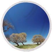 Bare Trees Along Shore Of Lake Manitoba Round Beach Towel