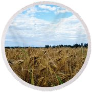Barley And Sky In Oulu, Finland. Round Beach Towel