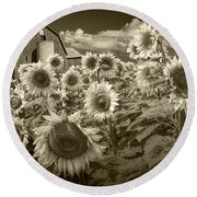 Barn And Sunflowers In Sepia Tone Round Beach Towel