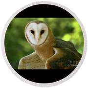 Barn Owl-6553 Round Beach Towel