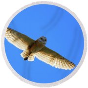 Barn Owl Flight Round Beach Towel