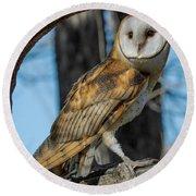 Barn Owl Framed In Cottonwood Round Beach Towel