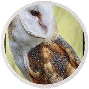 Barn Owl Portrait Round Beach Towel