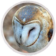 Barn Owle 1 Round Beach Towel