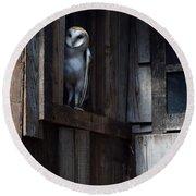 Barn Owl......i See You. Round Beach Towel