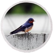Barn Swallow At Fort Larned Round Beach Towel