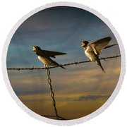 Barn Swallows On Barbwire Fence Round Beach Towel