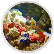 Barnacles And Sea Urchin Among Invertebrates In Monterey Aquarium-california  Round Beach Towel