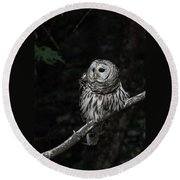 Barred Owl 2 Round Beach Towel