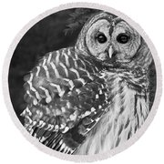 Barred Owl Beauty Round Beach Towel