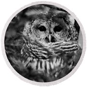 Barred Owl In Black And White Round Beach Towel