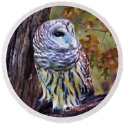Barred Owl In The Rain Oil Painting Round Beach Towel