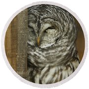 Barred Owl Round Beach Towel