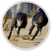 Battle Of The Racing Greyhounds At The Track Round Beach Towel