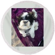 Baxter Boo Goes To The Beach Round Beach Towel