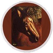 Bay Horse Art Horse Portrait Circe At Sunset Round Beach Towel