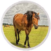 Bay Pony Round Beach Towel