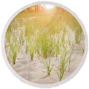 Beach Grasses Number 3 Round Beach Towel