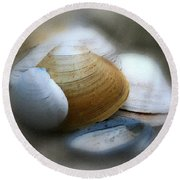 Beach Shells Round Beach Towel