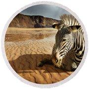 Beach Zebra Round Beach Towel by Carlos Caetano