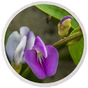 Beaked Butterfly Pea 9 Round Beach Towel