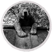 Bear On The Wall Round Beach Towel