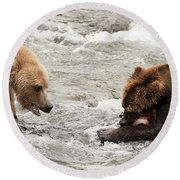 Bear Watches Another Eat Salmon In River Round Beach Towel