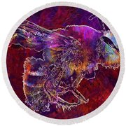 Bearded Bee Macro Insect Nature  Round Beach Towel