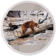 Bearly Relaxing Round Beach Towel