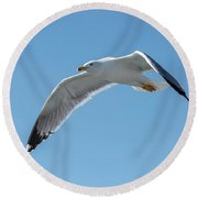 Beating Of Wings Round Beach Towel