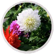 Beautiful And Fresh Dahlias In The Butchrt  Gardens,vancouver Island 1. Round Beach Towel